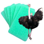 Pack of 6 Ostrich Non Scratch Cleaning Pads